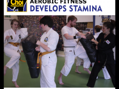 Aerobic fitness at Martial Art and Self-defence in Brighton at The Choi Foundation