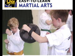 Easy-to-learn in Martial Art and Self-defence in Brighton at The Choi Foundation
