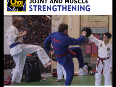 Joint and muscle strengthening fitness at Brighton Marital Arts and Self-defence classes, The Choi Foundation, Robert Tanswell